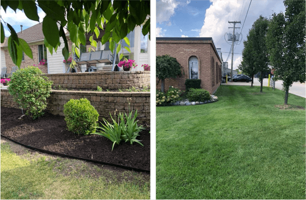 Spring Fall Clean Up Macomb St Clair County MI